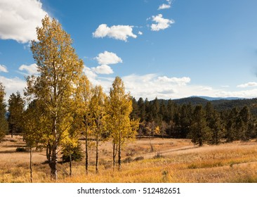 Autumn landscape with mountains and aspen trees turning yellow, Colorado, Rocky mountains