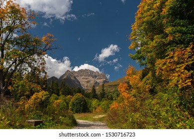 Autumn landscape, mountains with blue sky surrounded by yellowing trees, Dombay Caucasus