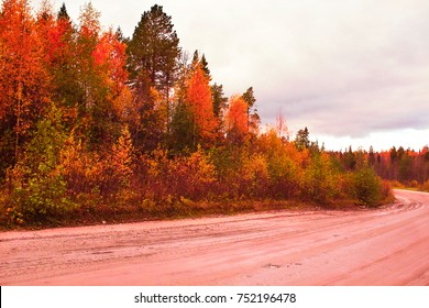 Autumn landscape nature