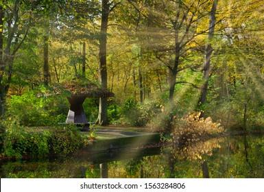 Herbstlandschaft im Naturschutzgebiet Ohligser Heide, Bergisches Land, Solingen, Deutschland