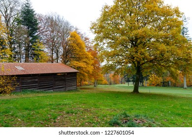 Autumn landscape with old barn and golden colors.
