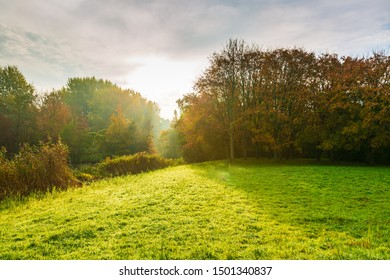 Autumn landscape on a foggy morning with sun rays through trees in Autumn colors.