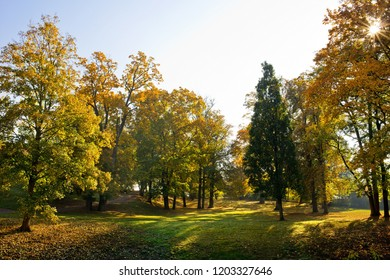 Autumn landscape. Park in Krasny Dvur. Czech Republic.
