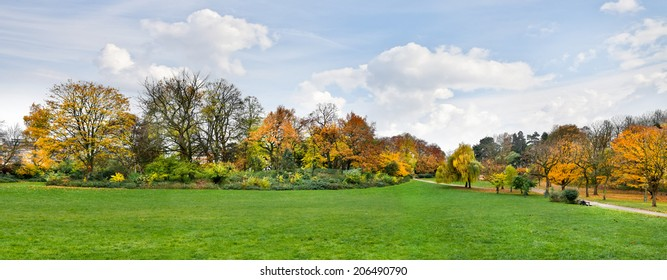Autumn Landscape. Park in Autumn. Panorama.