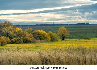 Autumn landscape photography. The European part of the land, fields, meadows, groves in autumn yellow tones. harsh gloomy gray sky in thick clouds