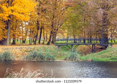 Autumn landscape with a pond in the park.Nature in the vicinity of Pruzhany, Brest region,Belarus.