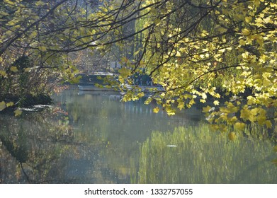 Autumn landscape of the pond of reserved park in Miskolc (Hungary).Miskolc is a famous  resort city well known with its thermal bath in natural cave.