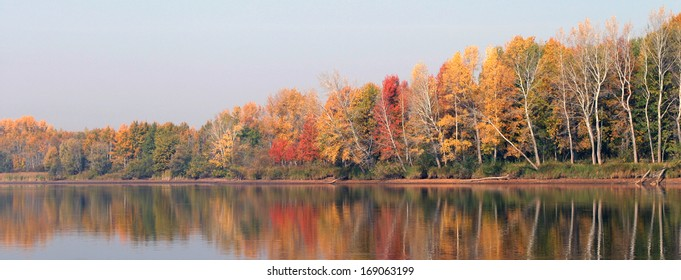 autumn landscape reflection of the forest in the river on a sunny morning
