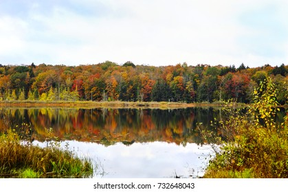 Autumn landscape. Autumn reflections