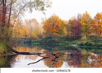 autumn landscape with a river and a forest