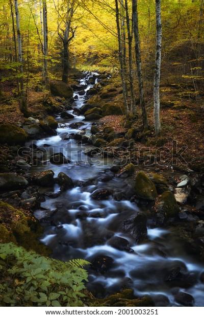 autumn-landscape-river-going-through-600