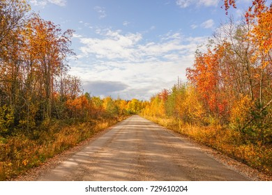Autumn landscape: road, colorful trees and blue sky