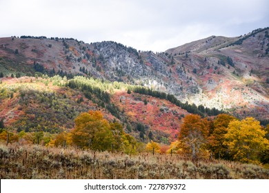 Autumn Landscape - Rocky Mountains