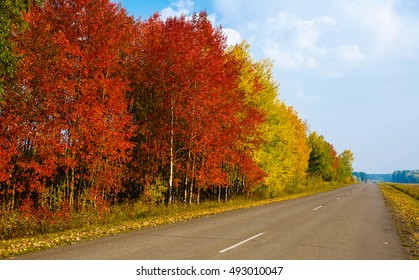 Autumn landscape in rural areas, the road, prospect