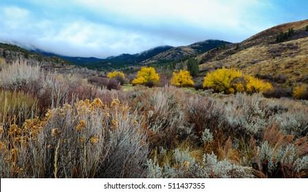 Autumn Landscape Scout Mountain