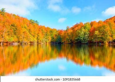 Autumn landscape in (seven lakes) Yedigoller Park - Bolu, Turkey