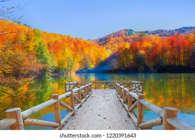 Autumn landscape in (seven lakes) Yedigoller National Park Bolu, Turkey