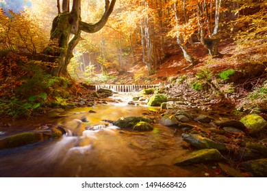 Autumn Landscape. Small mountains river in yellow trees forest, colors of fall nature, big size