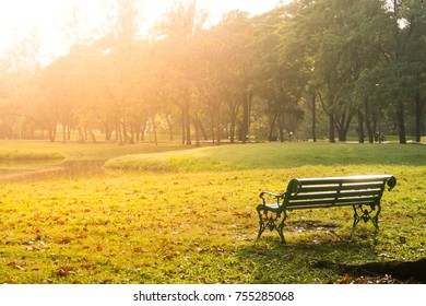 Autumn landscape with the sun warmly illumining a bench under a tree