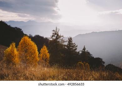 Autumn landscape from Transylvania, Romania