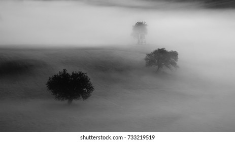 Autumn landscape with trees an fog in Slovakia. Fairy tale country. Morning scenery near village Poniky in Polana region