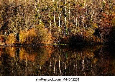 autumn landscape with trees on lake or river