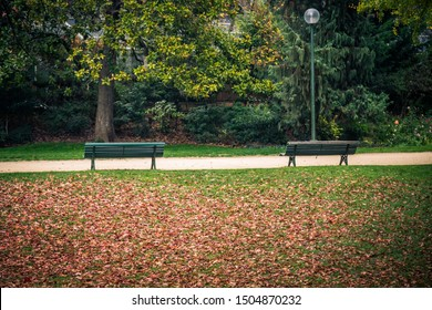 Autumn landscape with two benches lonely bench under trees, in a park in Paris, France