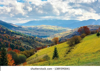 autumn landscape. village on the hillside. forest on the mountain covered with red and yellow leaves. over the mountains the beam of light falls on a clearing at the top of the hill.