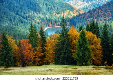 Autumn landscape in the western Ukrainian Carpathians