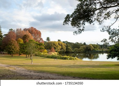 An autumn landscape with yellow & red trees, with the sun setting over a lake. Colourful foliage in the park & leaves falling