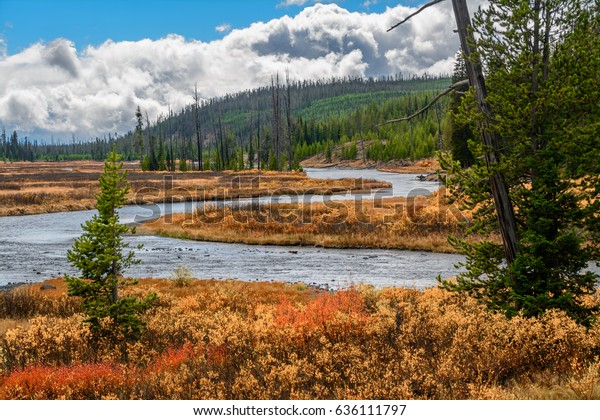 Autumn landscape in Yellowstone national park Wyoming USA