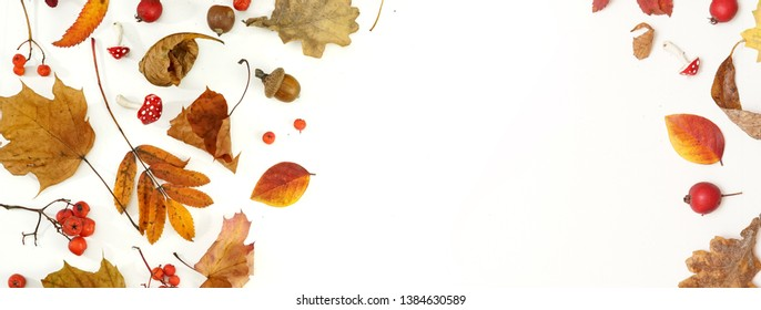 Autumn layout composition frame of dry leaves of twigs and berries on white background, Flat lay, top view, copy space, fall concept.
