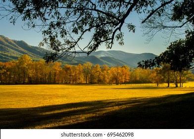 Autumn leaf colors in Great Smoky Mountains National Park at Cades Cove of Tennessee, USA, near sunset.