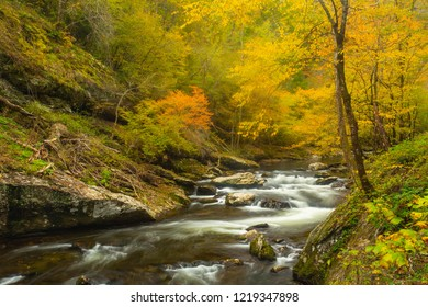 Autumn leaf colors on Little River in Smoky Mountains National Park Tennessee
