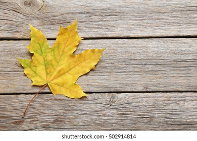 Autumn leaf on grey wooden table