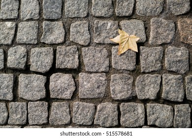 Autumn Leaf on stone cobbles