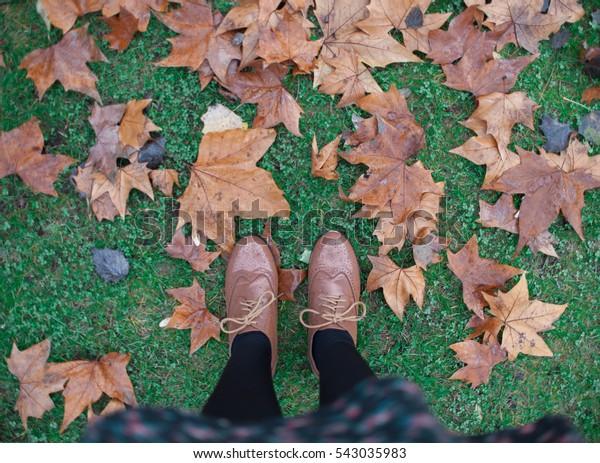 Autumn leaf under my vintage shoes