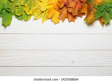 Autumn leafs colorful rainbow color gradient composition with white wood copy space.