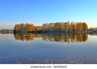 autumn leave background