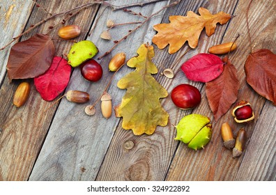 Autumn leaves with acorn, twig, chestnut over wooden background