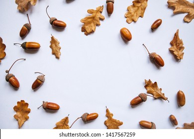 Autumn leaves and acorns on a white background. Abstract autumn background. In the middle there is a place for text.