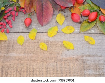 autumn leaves berries rose hips and berries of barberry branch on old wooden Board - Shutterstock ID 738939901