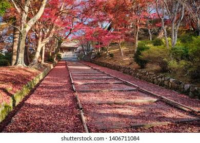 Autumn leaves in Bishamondo temple (Bishamon-do), Kyoto, Japan.
