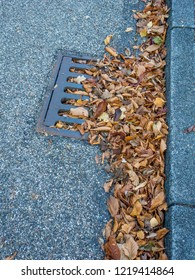 Autumn leaves blocked water channel system