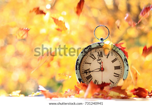 Autumn Leaves Blowing Wind Across Antique Stock Photo Edit Now 731240941