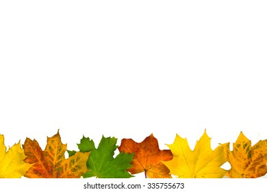 Autumn leaves border on white
