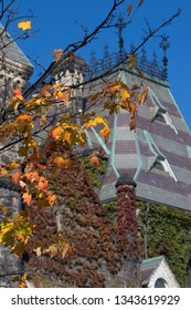 Autumn leaves changing color on background of medieval building roof