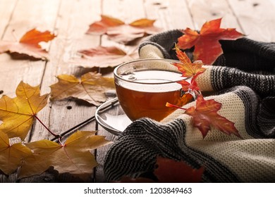 Autumn leaves and cup of tea on wooden table. Autumn mood background. Concept of the fall season
