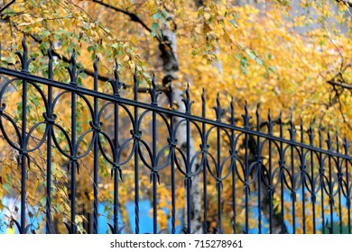 Autumn leaves and decorative fence in the city. Selective focus.