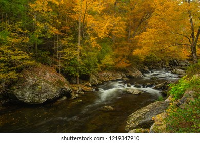 Autumn leaves in Fall changing colors on Little River in Smoky Mountains Tennessee
